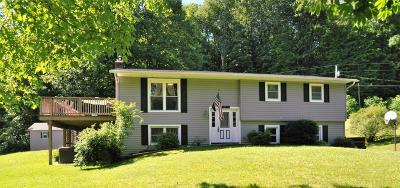 Granville Single Family Home For Sale: 71 Horseshoe Court
