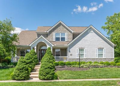 Hilliard Single Family Home Contingent Finance And Inspect: 4593 Trailane Drive