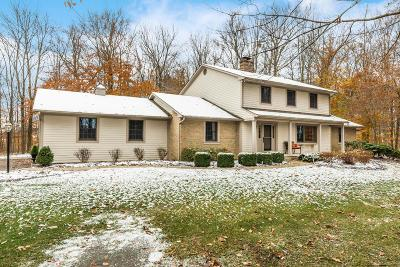 Dublin Single Family Home For Sale: 9860 Concord Road