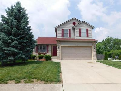 Hilliard Single Family Home Contingent Finance And Inspect: 2979 Brookford Drive