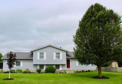 Millersport Single Family Home For Sale: 11709 Lancaster Street