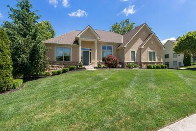 Westerville Single Family Home For Sale: 5597 Salem Drive