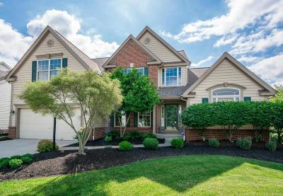 Powell Single Family Home For Sale: 7231 Scioto Chase Boulevard