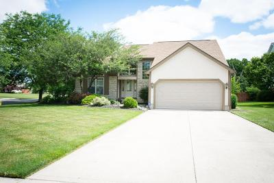 Grove City Single Family Home Contingent Finance And Inspect: 1190 River Trail Court