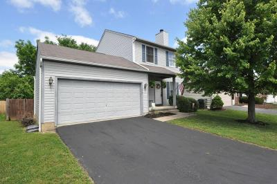 Grove City Single Family Home Contingent Finance And Inspect: 1907 Winding Hollow Drive