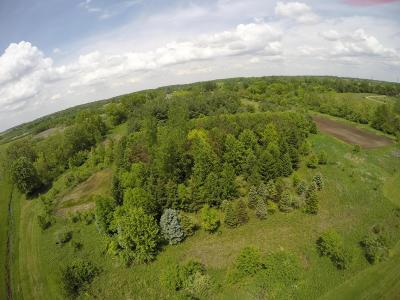 Plain City Residential Lots & Land For Sale: Mitchell-Dewitt Road