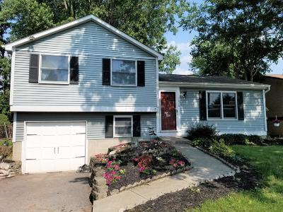 Reynoldsburg Single Family Home Contingent Finance And Inspect: 3020 Arrowsmith Drive