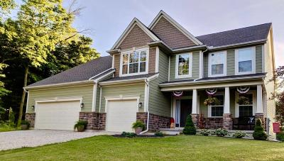 Johnstown Single Family Home Contingent Finance And Inspect: 139 Dutch Ridge Way