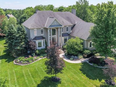 Dublin  Single Family Home For Sale: 4619 Sandwich Court