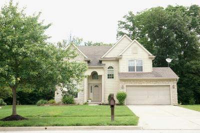 Blacklick Single Family Home Contingent Finance And Inspect: 6694 Estate View Drive N