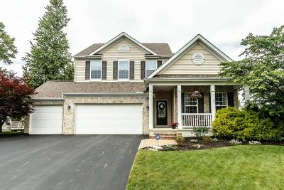 Westerville Single Family Home For Sale: 595 Deer Trail