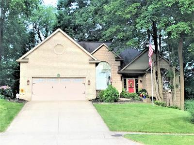 Mount Vernon Single Family Home Contingent Finance And Inspect: 7 Deer Trace
