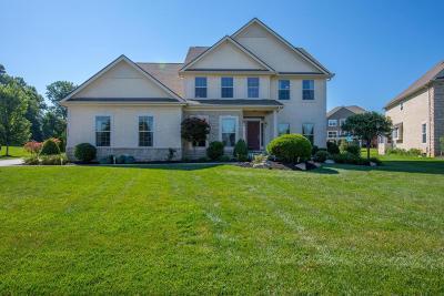 Dublin Single Family Home For Sale: 4118 Borge Way