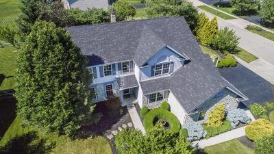 Lewis Center Single Family Home Contingent Finance And Inspect: 6188 Cheyenne Creek Drive