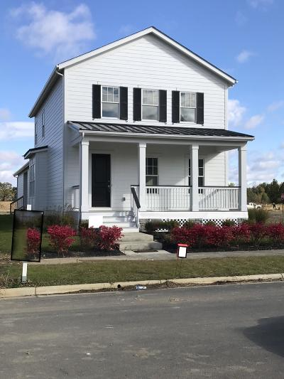 Lewis Center Single Family Home For Sale: 1923 Poplar Place #8506