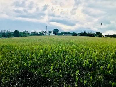 Chillicothe OH Residential Lots & Land For Sale: $49,955