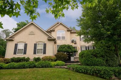 Blacklick Single Family Home Contingent Finance And Inspect: 2863 Langly Court