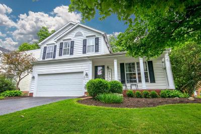 Powell Single Family Home Contingent Finance And Inspect: 291 Andover Drive