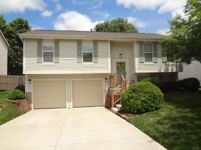 Dublin Single Family Home Contingent Finance And Inspect: 3124 Curtis Knoll Drive