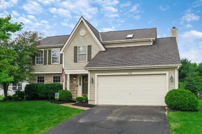 Lewis Center Single Family Home For Sale: 7718 Holderman Street