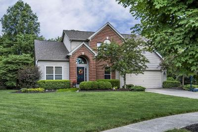 Powell Single Family Home Contingent Finance And Inspect: 3369 Brentwood Court