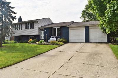 Pickerington Single Family Home For Sale: 9716 Merry Lane