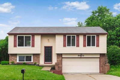 Groveport Single Family Home Contingent Finance And Inspect: 3922 Rhine Lane