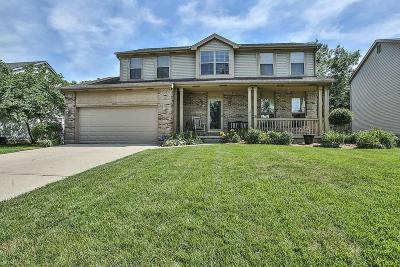 Grove City Single Family Home For Sale: 1333 Wild Horse Drive