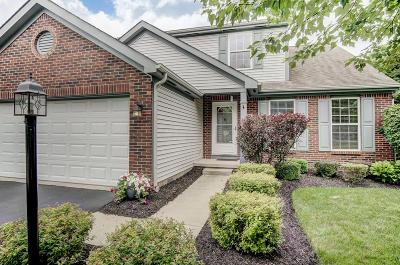 Blacklick Single Family Home Contingent Finance And Inspect: 330 Crafton Trail Loop