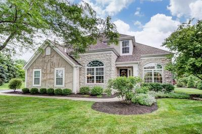 Dublin Single Family Home Contingent Finance And Inspect: 7760 Hawks Nest Drive