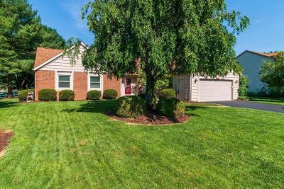 Pickerington Single Family Home For Sale: 12171 Raintree Avenue