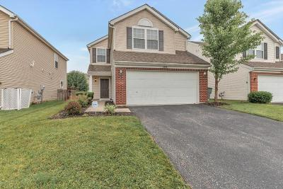 Hilliard Single Family Home For Sale: 5828 Annmary Road
