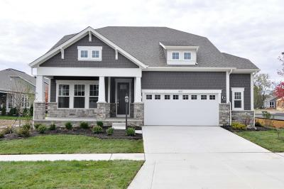 Union County Single Family Home For Sale: 8517 Firenza Place #Lot 99