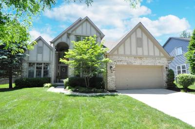 Westerville Single Family Home For Sale: 339 Aylesbury Drive S