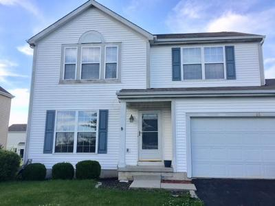 Blacklick Single Family Home Contingent Finance And Inspect: 7950 Waggoner Run Drive