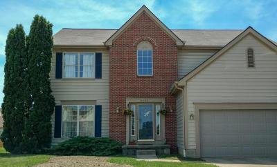 Reynoldsburg Single Family Home For Sale: 8633 Robbins Loop Drive