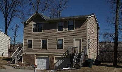 Columbus Multi Family Home For Sale: 4956 Magnolia Blossom Boulevard #4956-58