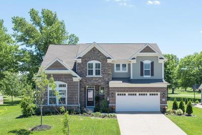 Delaware Single Family Home For Sale: 825 Ballater Drive
