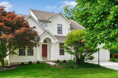 Dublin Single Family Home For Sale: 6052 Round Tower Lane