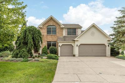 Dublin Single Family Home Contingent Finance And Inspect: 8864 Sunart Court N