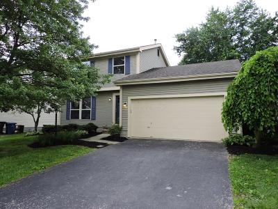 Columbus Single Family Home For Sale: 3963 Maidstone Drive
