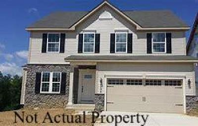 Etna Single Family Home For Sale: 143 Kaitlyn Drive
