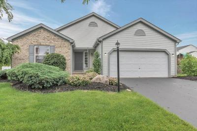 Westerville Single Family Home For Sale: 6143 Hilmar Drive