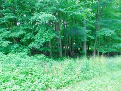 Howard Residential Lots & Land For Sale: Lot 309 Apple Valley Dr Drive