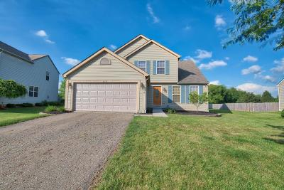 Newark Single Family Home Contingent Finance And Inspect: 1572 S Hunters Drive