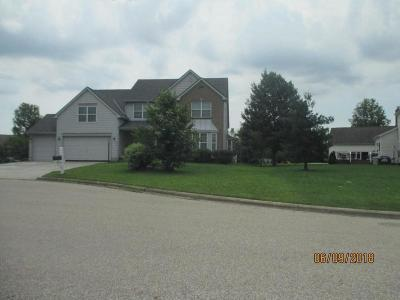 Powell OH Single Family Home For Sale: $379,900