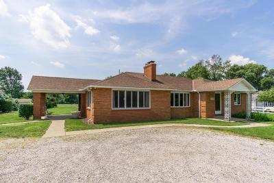 Pickerington Single Family Home For Sale: 377 E Columbus Street