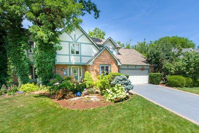 Westerville Single Family Home For Sale: 121 Spring Valley Road