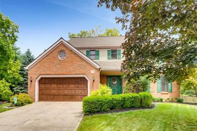 Columbus Single Family Home For Sale: 272 Pampas Court