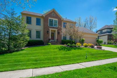 Dublin Single Family Home For Sale: 4833 Galway Drive